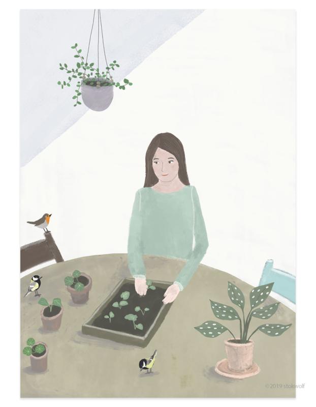 postkaart | Zaaien