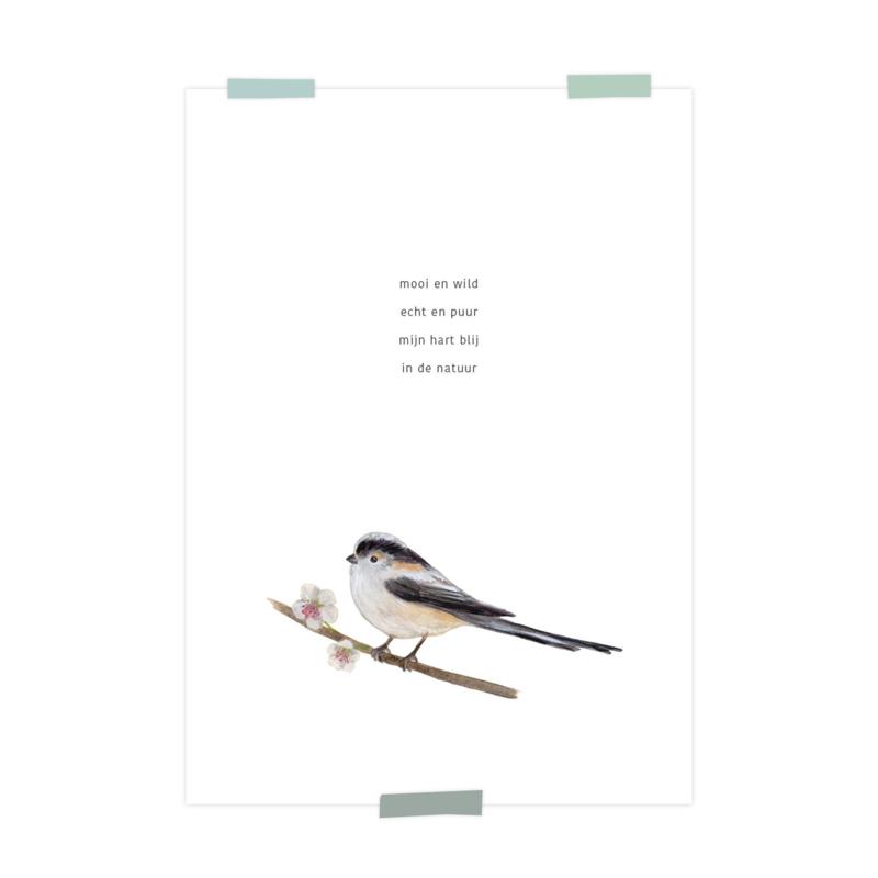 print | Natuur