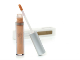 beMineral Perfect Cover Concealer