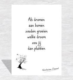 Dromen plukken