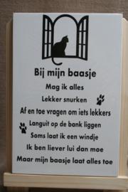Bij mijn baasje kat
