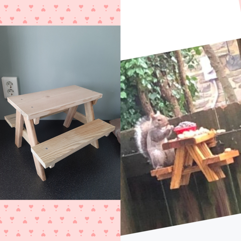 Eekhoorn picknick bankje