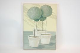 Schilderij  Bloem in pot