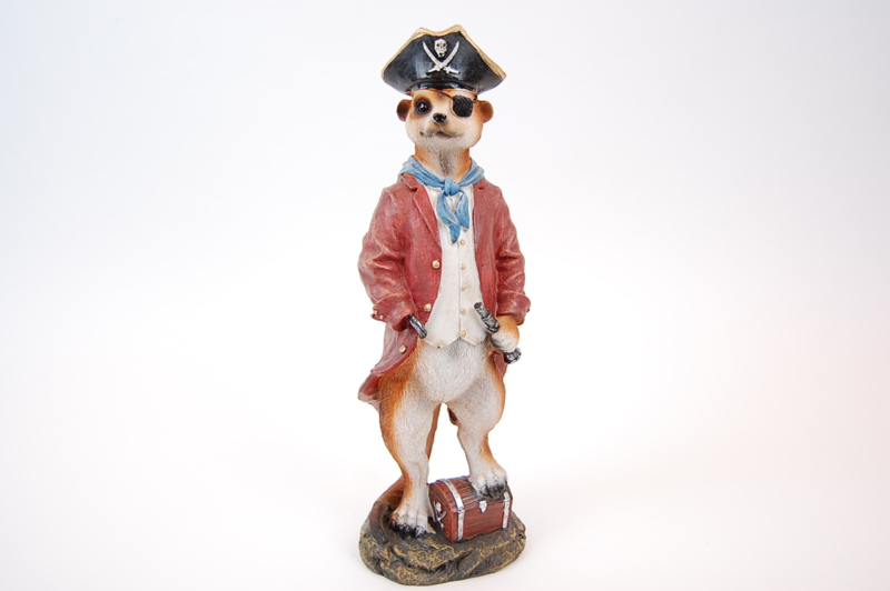 Stokstaartje piraat