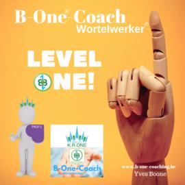 GROEP 8 - Optie 2 - Opleiding B-One®-Coach/Wortelwerker® Level ONE - voorschotfactuur en 6 deelfacturen (totaal 7 facturen)
