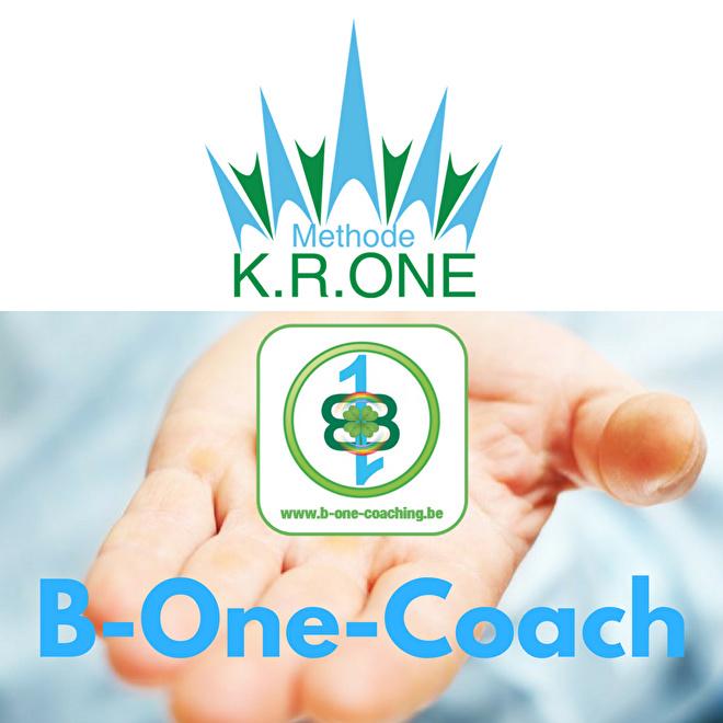 GROEP 6 - Optie 2 - Opleiding B-One®-Coach/Wortelwerker® Level ONE - VOORSCHOT €585 en 6 deelfacturen (€420) - Ticket 6GB1CWF2 - BORSBEEK