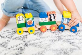 Nijntje houten trein