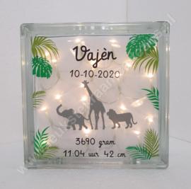 Glazen geboorteblok Safari met verlichting