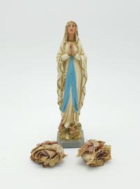 Mooi gekleurde Maria 22 cm