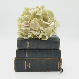 Stapeltjes van 3 kerkboekjes in het zwart