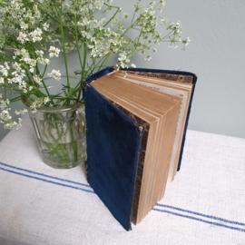 Oude bijbel ( 1817) met velours blauwe kaft