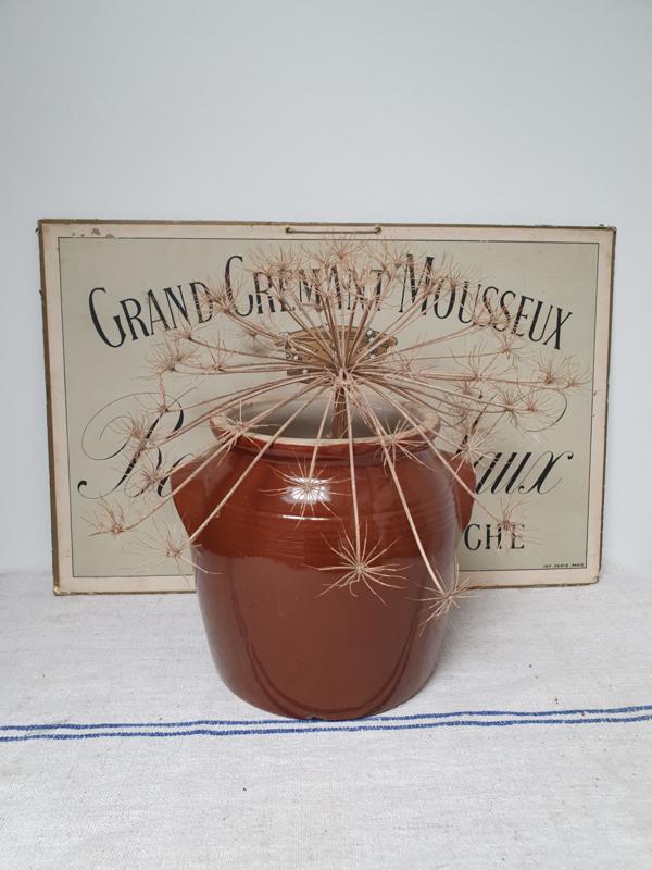 Mooie bruine grespot