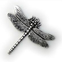 Halsketting hanger Libelle