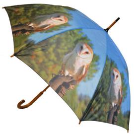 Paraplu Kerkuil