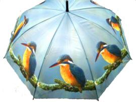 Paraplu IJsvogel