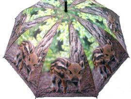 Paraplu`s