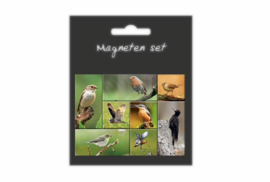 Magneten set Vogels