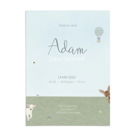 Geboortekaart Adam - lente