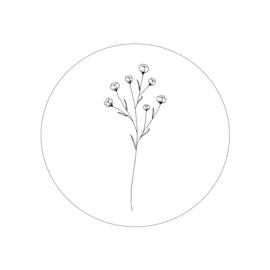 botanisch 3