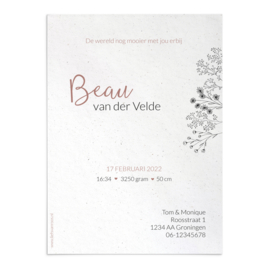 Geboortekaart Beau