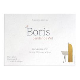Geboortekaart Boris