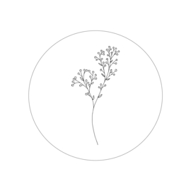 botanisch 1