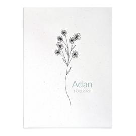Geboortekaart Adan