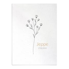 Geboortekaart Jeppe