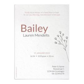 Geboortekaart Bailey