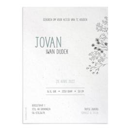 Geboortekaart Jovan