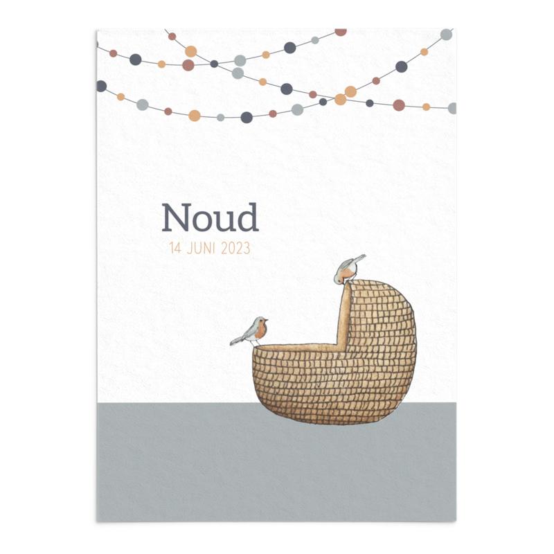 Geboortekaart Noud