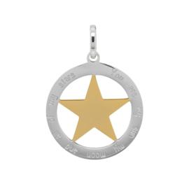 iXXXi Jewelry Hanger Ster Goudkleurig / Zilverkleurig ∅38