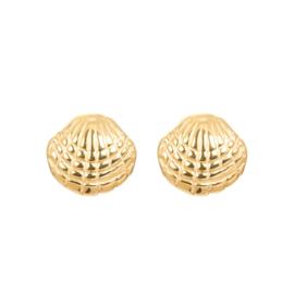 iXXXi Jewelry Ear Studs Shell Goudkleurig