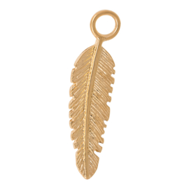 iXXXi Jewelry Charm Feather Gold colour