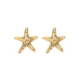 iXXXi Jewelry Ear Studs Starfish Goudkleurig