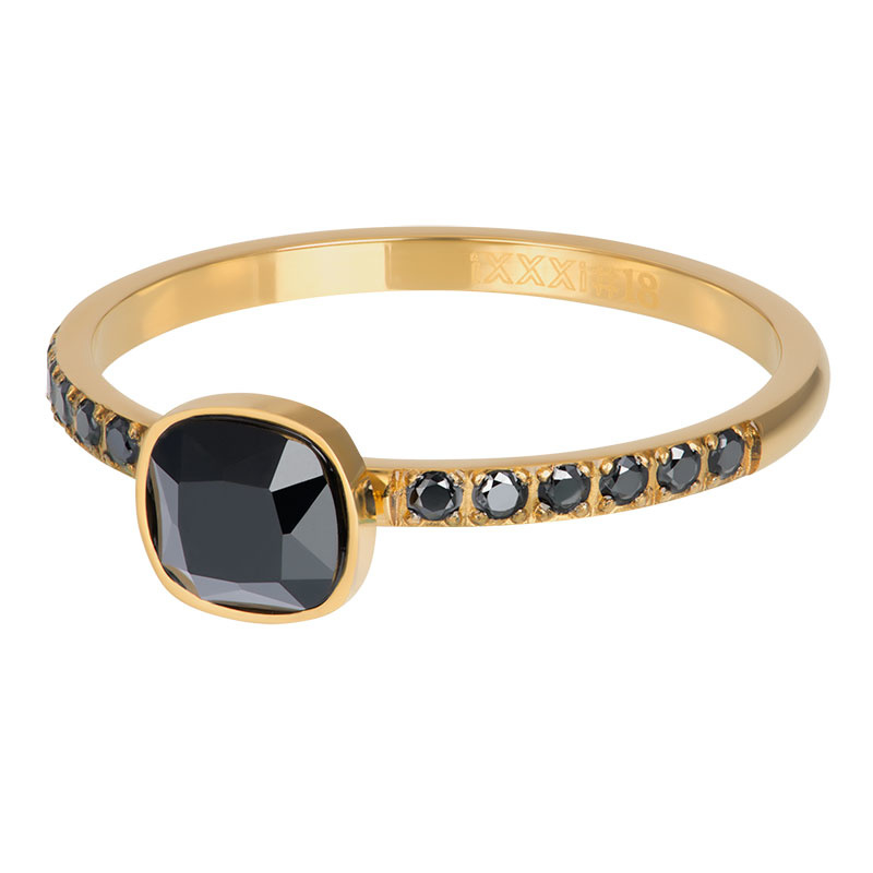 iXXXi Jewelry Vulring Prince Goudkleurig 2mm