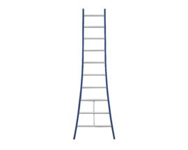 DAS enkele ladder 10 sporten