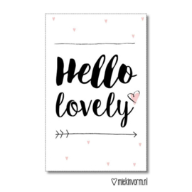Hello lovely | Mini-kaart