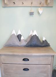 'Bjerg'