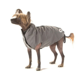 I Love My Dog - Night Light Jacket zilver
