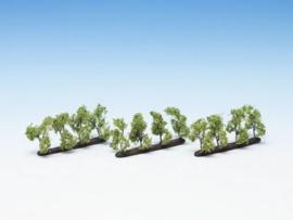 Plantagenbomen 12 st., 3,5 cm hoog