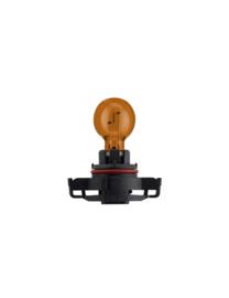 Lamp PSY21W