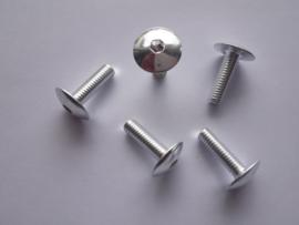 Bout Inbus Bolkop M 6 x 20 Aluminium