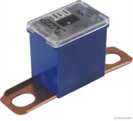 PAL Zekering CS  100A Blauw