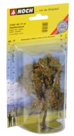 Lijsterbesboom 11,5 cm hoog Noch