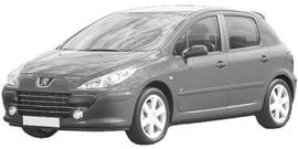 Peugeot 307 7/2005-2008