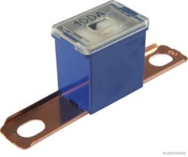 PAL Zekering C 100A Blauw