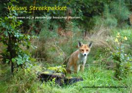 Veluws Streekpakket - Jong vosje op de uitkijk