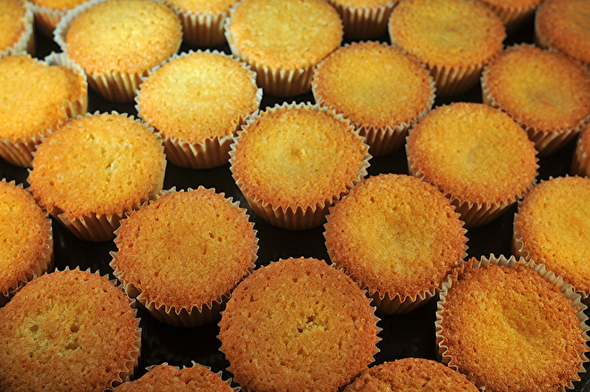 Cupcakes_5186.jpg