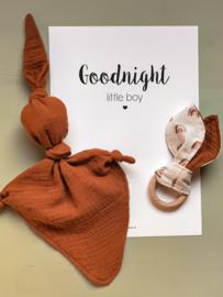 Poster Goodnight Boy